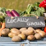 Locally Grown Veggies